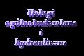 USŁUGI OGÓLNOBUDOWLANE I HYDRAULICZNE Dariusz Majewski
