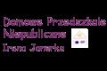 Domowe Przedszkole Niepubliczne Irena Janerka