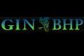 GIN-BHP