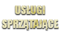 Dariusz Łapiński Firma Usługowa
