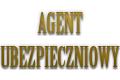Agent Ubezpieczeniowy Lilianna Gołasiewicz