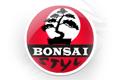 Bonsai Styl Aldona Rajewska