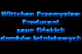 Wittchen Przemysław - Producent saun fińskich, domków letniskowych
