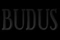 Seweryn Adamski Usługi Remontowo - Budowlane Budus