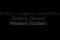 Firma Usługowo Handlowa-Roboty Ziemne - Wiesław Sibiński